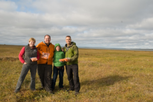 Core berry team on the tundra with the fruits of our labor. Pictured left to right: Drs. Courtney Flint, Josh Kellogg, Mary Ann Lila, and Gary Ferguson. Photo credit: Joshua J. Kellogg.